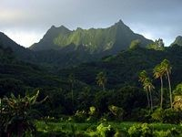 Rarotonga's highest Peak, Te Manga, as seen from the south coast