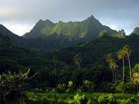 Rarotonga's highest Peak, Te Manga, as seen from the south coast